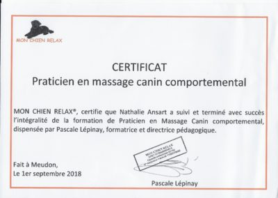 PRATICIEN EN MASSAGE CANIN COMPORTEMENTAL